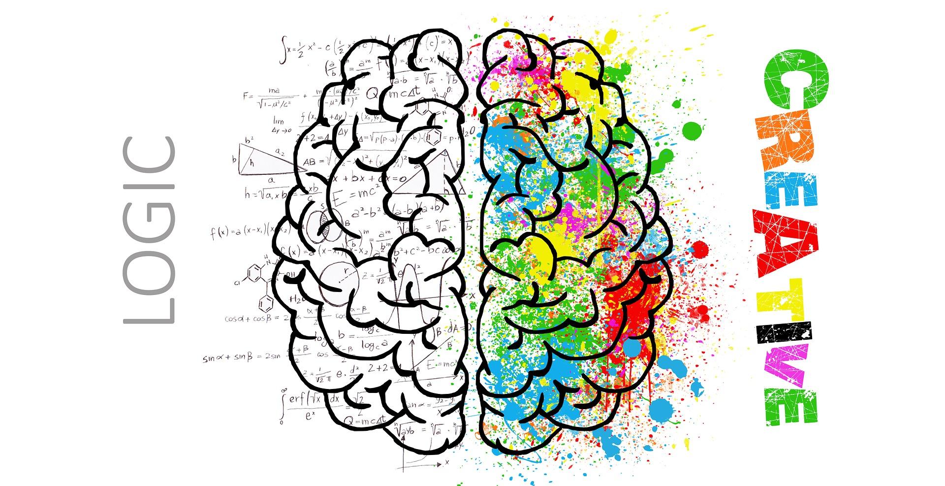 В чём разница между IQ и EQ? Как определить, у человека сильнее развит интеллект или эмоциональный интеллект.